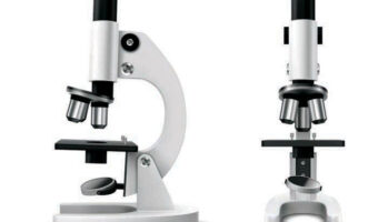 Best Affordable Microscopes